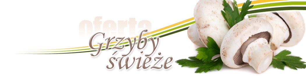baner_oferta_grzyby
